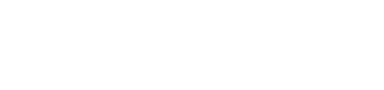 Direct Gap Logo